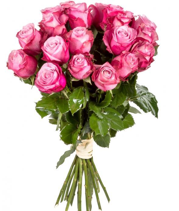 Różany bukiet z 15 długich róż