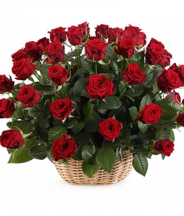 Kosz z 50 czerwonych średnich róż