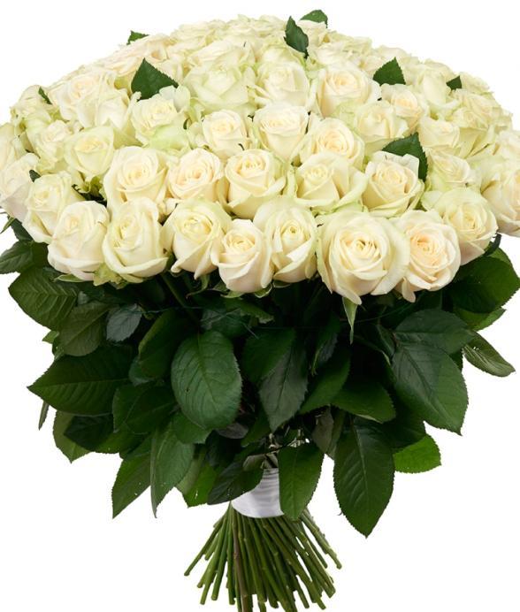 """Bukiet """"100 białych róż"""""""