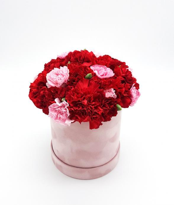 """Goździki w różowym zamszowym pudełku """"XL"""""""