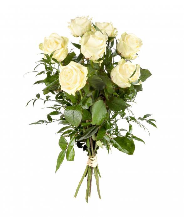Bukiet z 7 białych róż